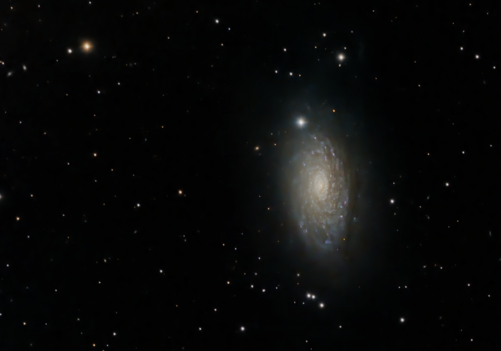 The Sunflower Galaxy (M63)