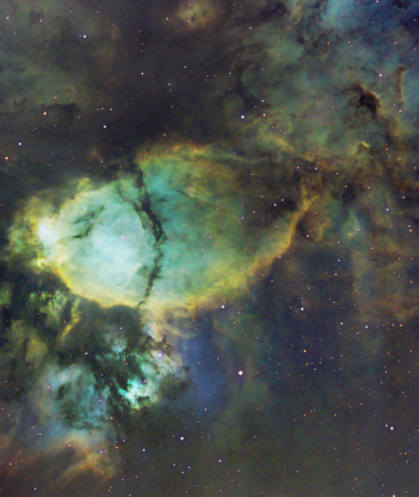 Fish Head Nebula