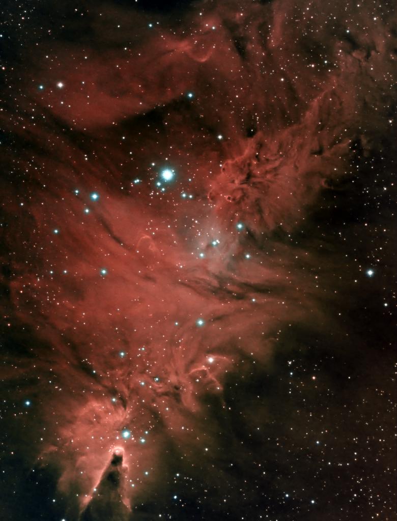 Cone and Fox Fur Nebulas