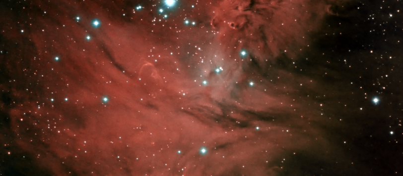 Cone and Fox Fur Nebulas