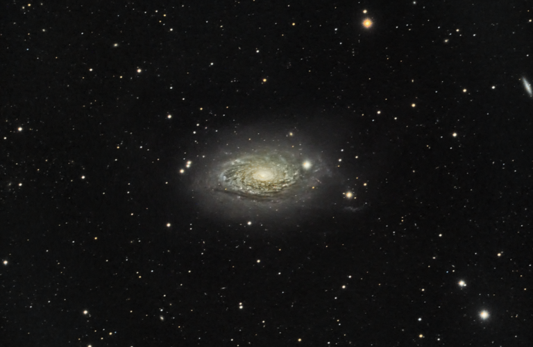 Revisiting M106 and the Sunflower